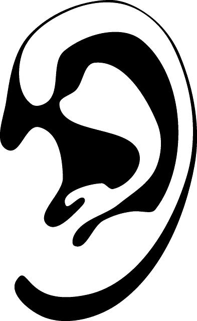 ¿Como funciona el oído? Foto:OpenClipartVectors, Pixabay