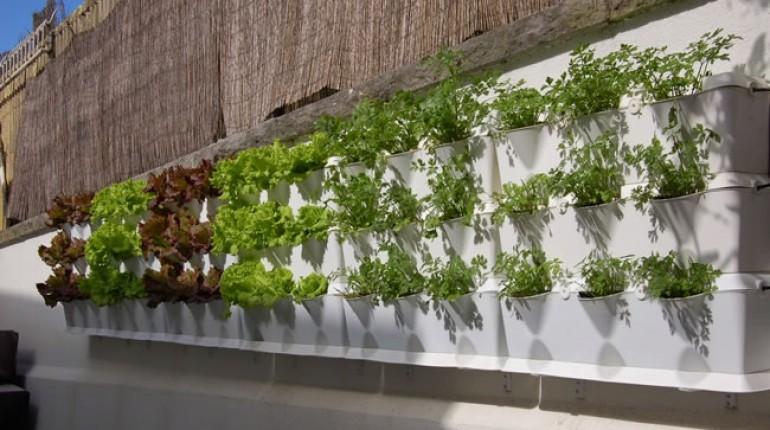 Crea tu jard n vertical con sistemas modulares la notita for Modulo jardin vertical